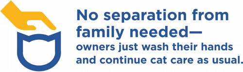 No separation from family needed—owners just wash their hands and continue cat care as usual.