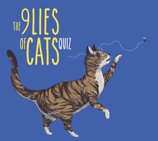 The 9 lies of cats quiz