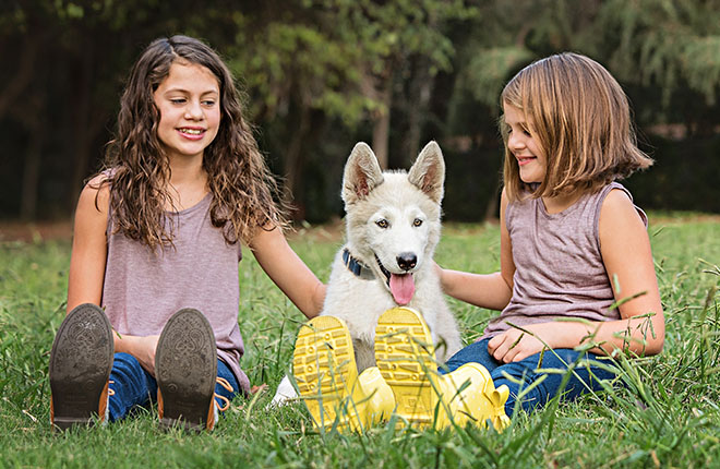 The Best Dog Breeds for Families with Kids