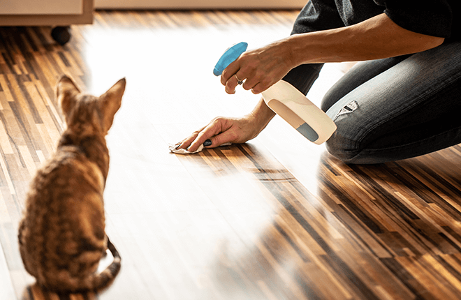 Household Products That are Poisonous for Pets