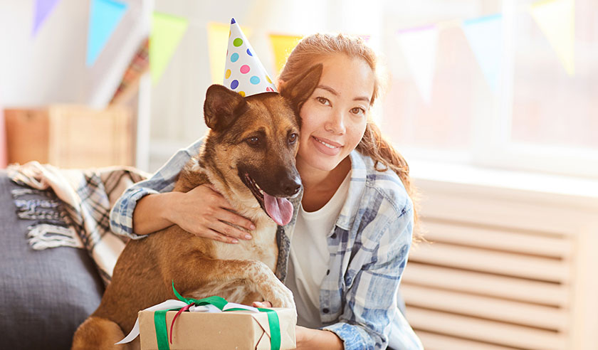 "8 Ways to celebrate your pet's ""gotcha day"""
