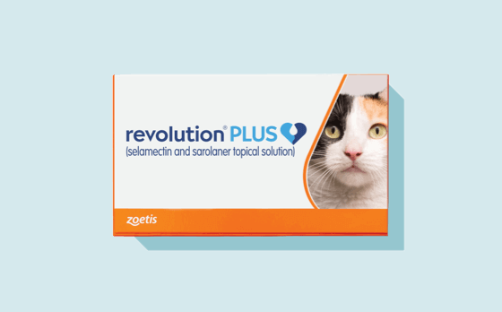 <p>Revolution Plus Provides 6-in-1 Pest Protection for&nbsp;Your Cat</p>