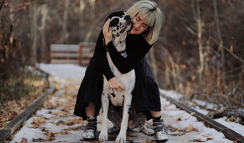 5 Ways to Restart Your Year with Your Pet