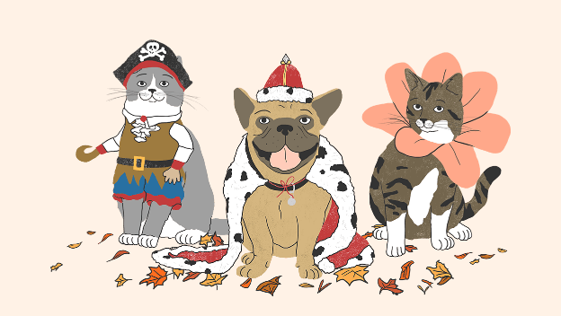 Submit a Photo of Your Pet's Costume for a Chance To Win A Prize!