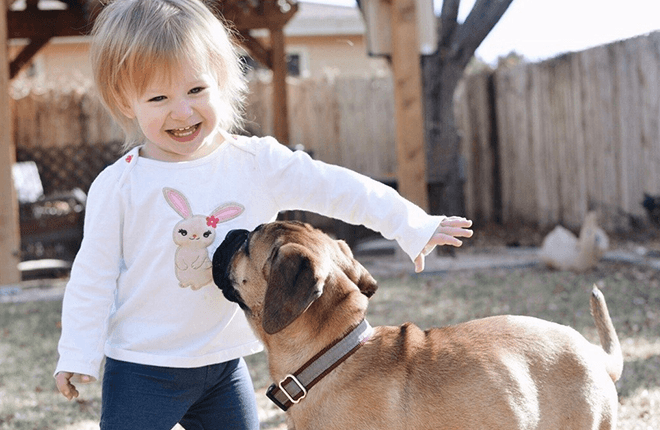 8 Ways Kids Can Help with Pets